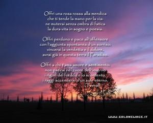 Poesie renza mario - La rosa racconta la vita dei divi ...