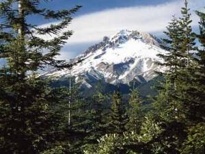 montagne03-500